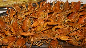 stock photo of crawdads  - a lot of hot fresh boiled red crawfish - JPG