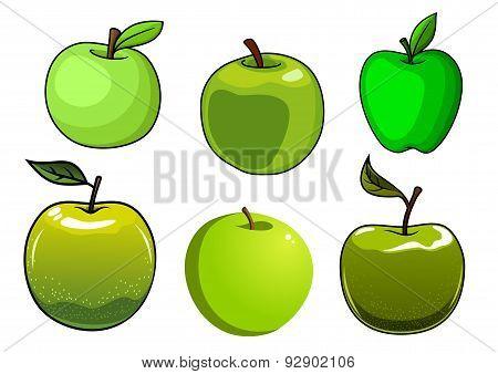 Fresh green apples fruits set