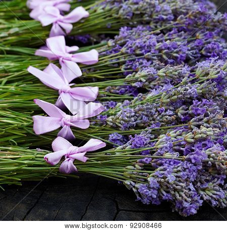 Rural harvest of lavender flowers