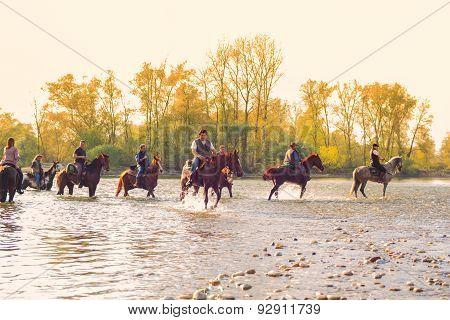 Horses, Ticino River
