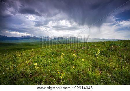 Summer Mountains In Kazakhstan
