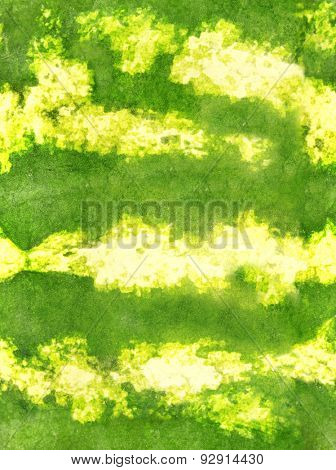 Seamless green striped texture of the rind of watermelon