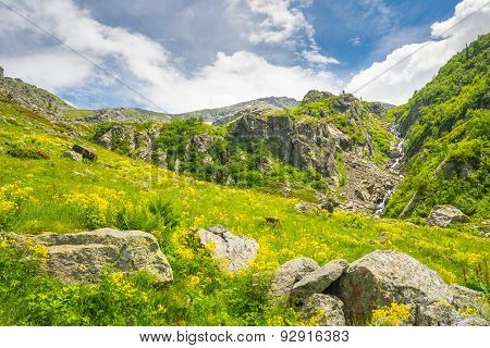 Alpine Landscape In Spring And Summer