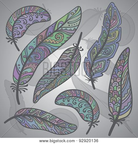 Vector colored feathers set.