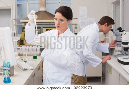 Scientists working attentively with test tube and microscope in laboratory