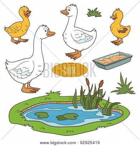 Color Set Of Cute Farm Animals And Objects, Vector Goose Family