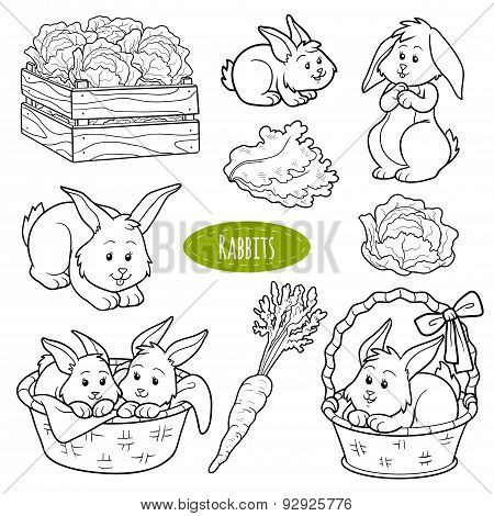Set Of Cute Vector Family Rabbits