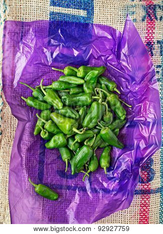 Padron Green Peppers.