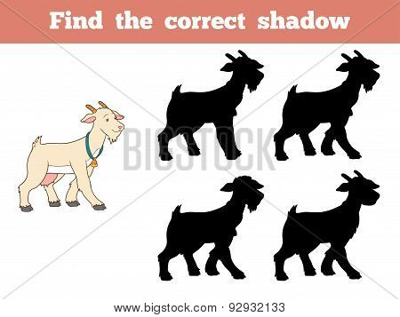 Find The Correct Shadow (goat)