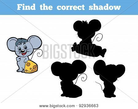 Find The Correct Shadow (mouse)