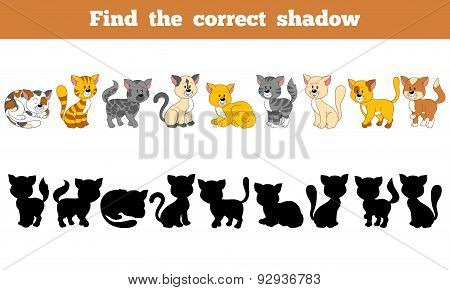 Find The Correct Shadow (cats)