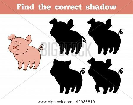 Find The Correct Shadow (pig)