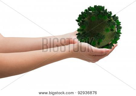 Hands presenting against sphere covered with forest