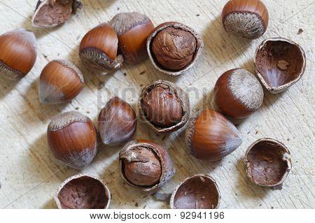 Nuts, hazelnuts.