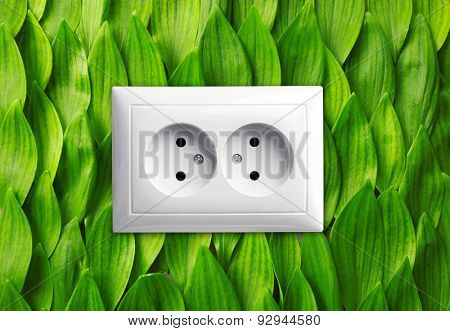 Socket on green leaves background