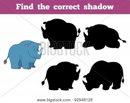 Find The Correct Shadow (rhino)