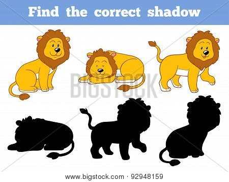Find The Correct Shadow (lion)