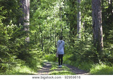 Larch grove