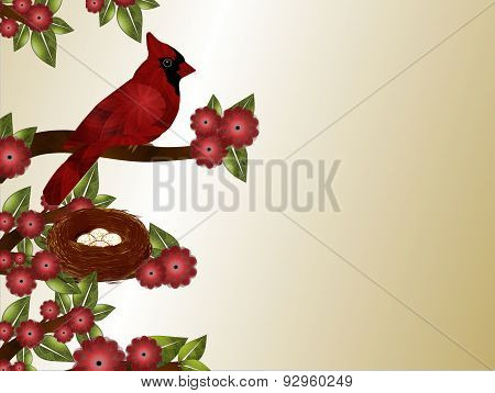 Cardinal and Nest with Eggs