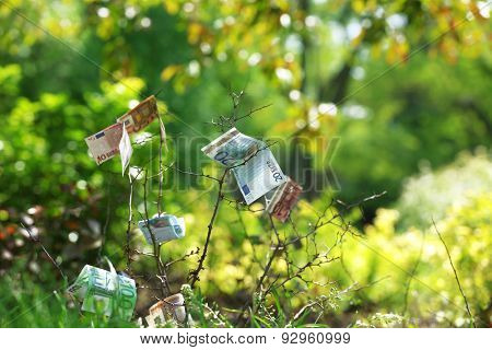 Banknotes money over green grass background