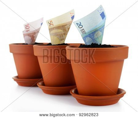 Growing money in flowerpots isolated on white