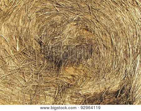 Detail Of Bale Of Hay
