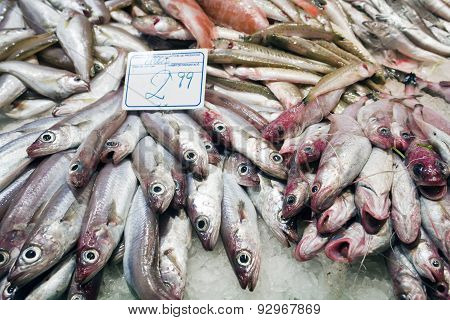 blue whiting in La Boqueria fish market Barcelona Spain