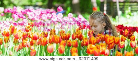 Little adorable girl smelling colorful tulips at summer garden