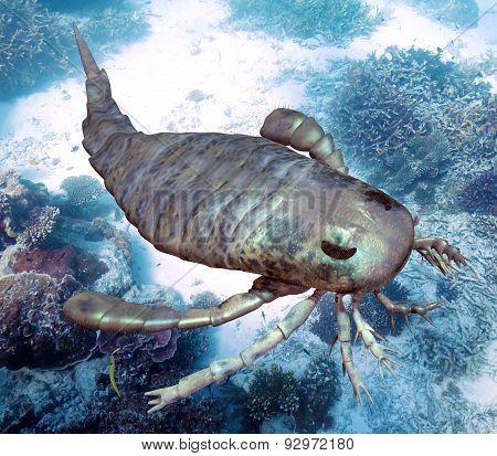Eurypterus Scanning Seafloor