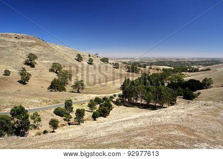 Australian Rural Summer Landscape