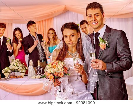 Happy wedding couple and guests drinking champagne in banquet room.
