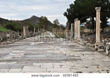 The celebrated Harbor street at Ephesus, Turkey
