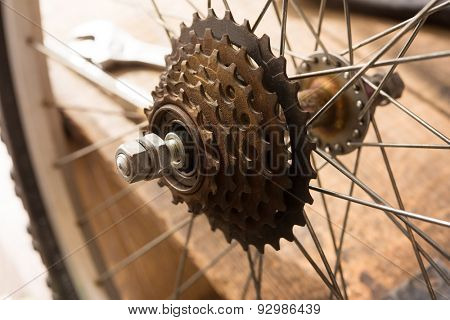 Bicycle repair. sprocket section of a bicycle. Repairing or a rear wheel of a bicycle.