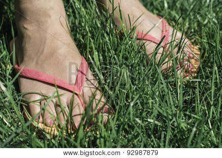 Feet On Green Meadow.
