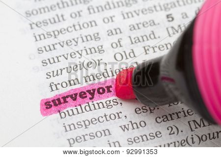 Dictionary Definition Surveyor