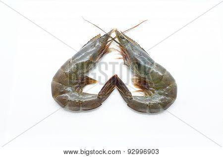 Raw, fresh shrimp, prawn isolated on white background