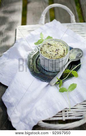 Chocolate chip mint ice cream