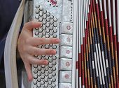 stock photo of accordion  - hand of a young woman plays the ancient accordion keyboard - JPG