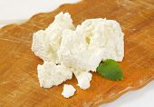 image of curd  - slices of fresh curd cheese on wooden cutting board - JPG