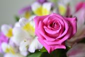 stock photo of carnation  - Colorful bouquet of flowers roses lilies carnations. ** Note: Shallow depth of field - JPG