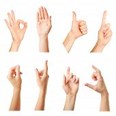 picture of nonverbal  - Collage of  hands showing different gestures - JPG