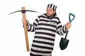 foto of spade  - Prison inmate with axe and spade - JPG