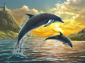pic of bottlenose dolphin  - Two dolphins jumping out of sea over a beautiful sunset - JPG