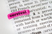 foto of survival  - A Dictionary definition of the word Survival - JPG
