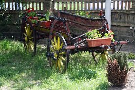 foto of wagon  - Vintage style horse wagon - JPG