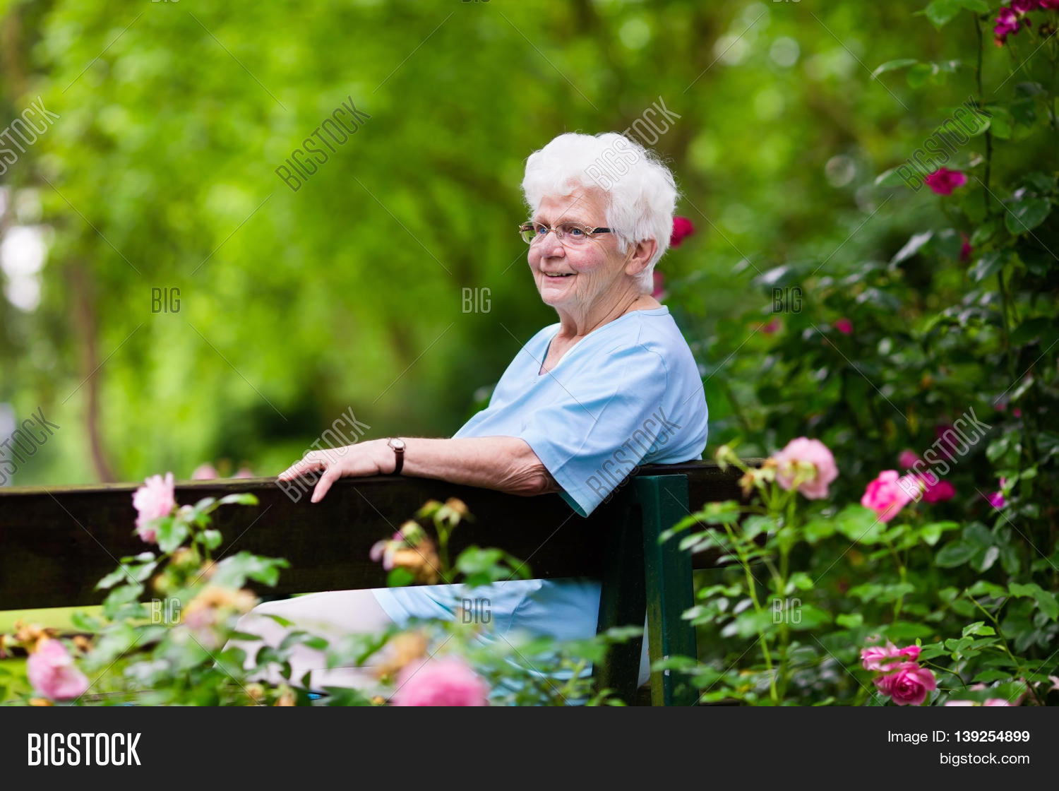 Happy senior lady sitting on wooden bench blooming rose garden ...