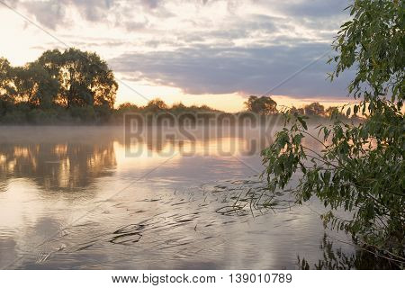Summer. Early Morning. Sunrise. Mirror Surface Of The Pond With A Haze Of Fog.