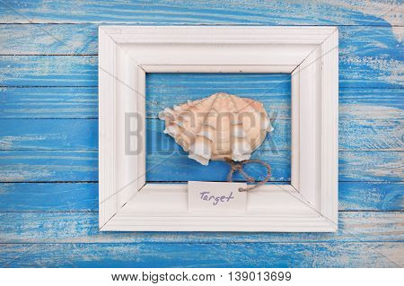 Sea Shell In The Frame With Sign - Target