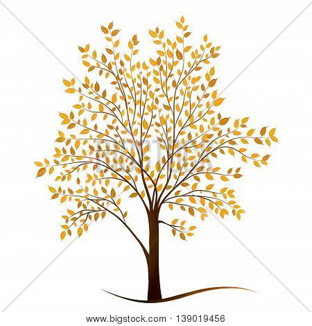 Autumn tree with leaves on white background vector
