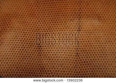 Beeswax Wirhout Honey